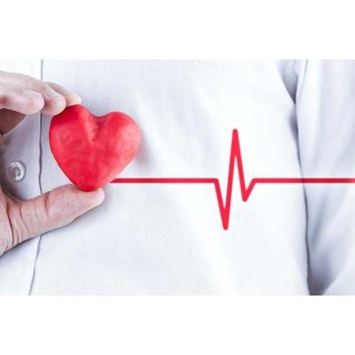 Актуальная диагностика сердечно-сосудистых заболеваний – 36 ч.