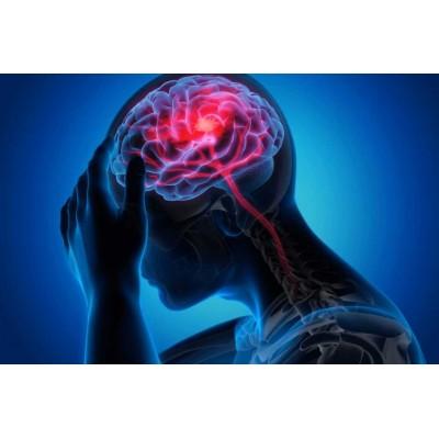 Актуальные разделы диагностики приобретенных и врожденных заболеваний нервной системы – 36 ч.