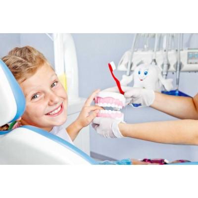 Стоматология детская – 576 ч.